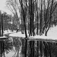 Зима. :: Александр Дмитриев