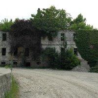 Абхазия после войны :: Алексей Ворон