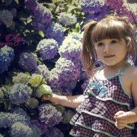 Глядя на мир в фиолетовом свете :: Olga Verenich