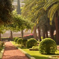 бахайские сады :: Ника Владимирова