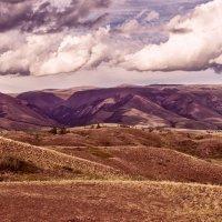 Алтайские горы :: cfysx