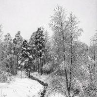 Зимний пейзаж :: Сергей Малашкин