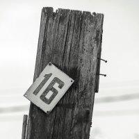 № 16. :: Анатолий. Chesnavik.