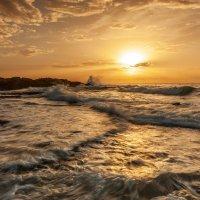 Mediterranean sea :: Aharon Gershon