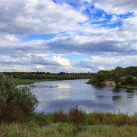 река Ипуть :: оксана