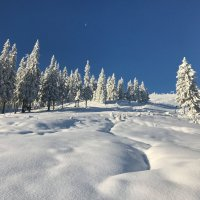 Зима прийшла в Карпати :: Степан Карачко