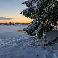 Морозное утро :: Владимир Чикота