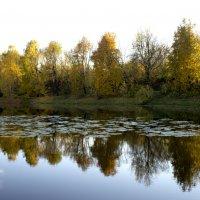 Осенние отражения :: Александр Жураковский