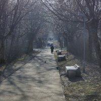 Осенью в парке :: gribushko грибушко Николай