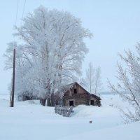Деревенские зимние мотивы 2 :: Светлана Рябова-Шатунова
