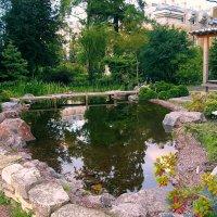 В Ботаническом саду. :: Лия ☼