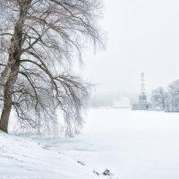 Метель в Царском Селе :: Юлия Батурина