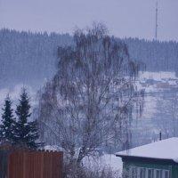 Холодно :: Алексей Екимовских