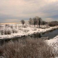 Спустился к речке розовый закат... :: Нэля Лысенко