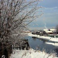 Зимняя рябина у реки... :: Нэля Лысенко