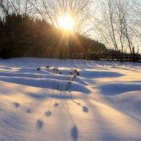 Низкое солнце, длинные тени... зима :: Галина Ильясова