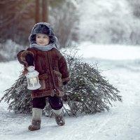 зимние истории :: Марина Воронкова