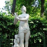 В Летнем саду :: Наталия Короткова