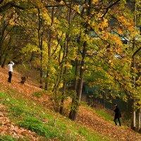 В парке :: Lusi Almaz