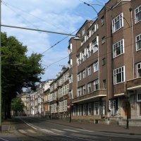 На улицах Гааги :: Grey Bishop