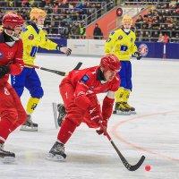 Про русский хоккей :: Сергей Черных