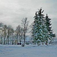 Зима! :: ирина