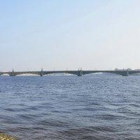 Над Невой :: Николай Танаев