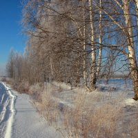 А снег не падал,он парил... :: Нэля Лысенко