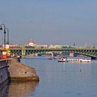 Троицкий мост на горизонте :: Елена