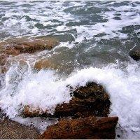 Игры моря :: Людмила
