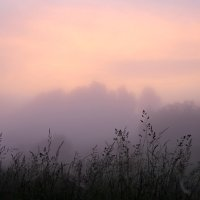 Раннее утро у села Холохоленка Тверской области :: Сергей Козинцев