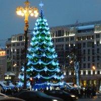 Москва новогодняя! :: ирина