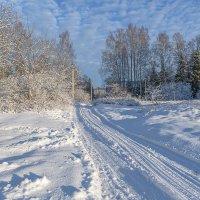 Морозный декабрь :: Борис Устюжанин