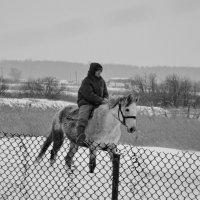 Зимний всадник :: Светлана Рябова-Шатунова