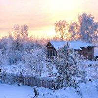 В зимнем королевстве... :: марк