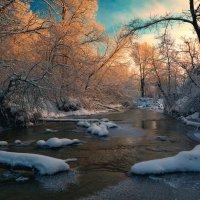 Зимняя Дубёнка ... :: Roman Lunin