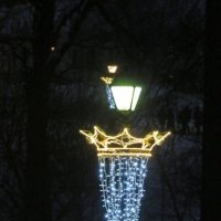 Царицынский  праздничный  фонарь :: Виталий Селиванов