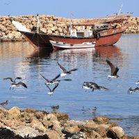 одномачтовое арабское каботажное судно в порту Лакби :: Георгий А