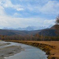 Спустившись в долину Чуи. :: Валерий Медведев