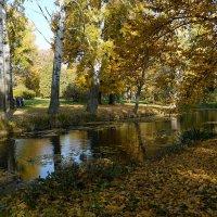 Осенний шарм :: Olga F