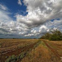 Небо после грозы. :: Сергей Бойко