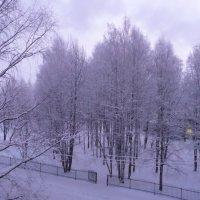 Утро морозное -25 :: Виктор