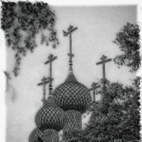 Купола :: Андрей Пахомов