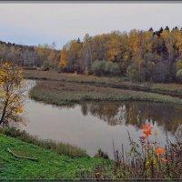 Подмосковье осень. :: Vadim WadimS67
