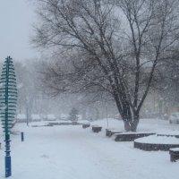 Снегопад :: Елена Семигина