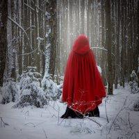Красная Шапочка :: Ирина