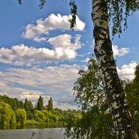Прекрасно лето у реки :: Ольга Винницкая (Olenka)