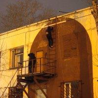 С крыши. :: Ильсияр Шакирова