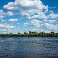На реке :: Elena Wise