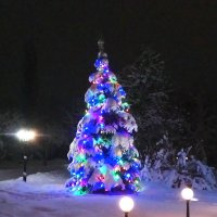 Зима :: tina kulikowa